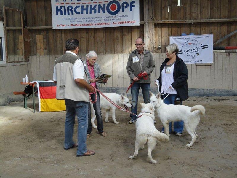 amy-ausstellung-schefflenz-02-09-2012-002