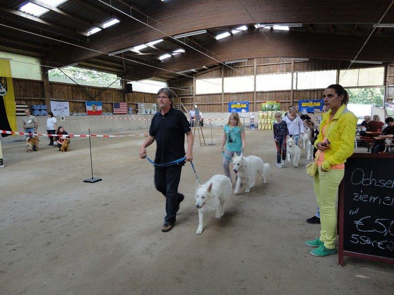 amy-ausstellung-schefflenz-02-09-2012-095