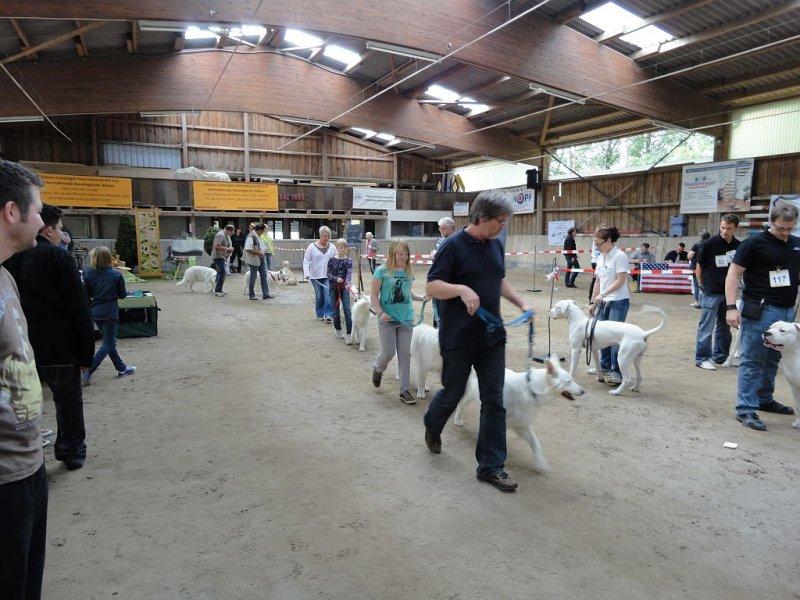 amy-ausstellung-schefflenz-02-09-2012-097