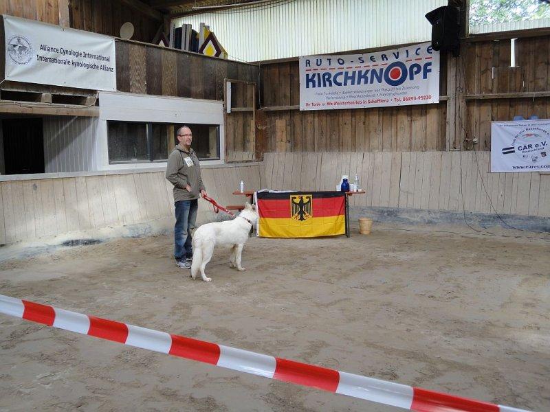 amy-ausstellung-schefflenz-02-09-2012-108