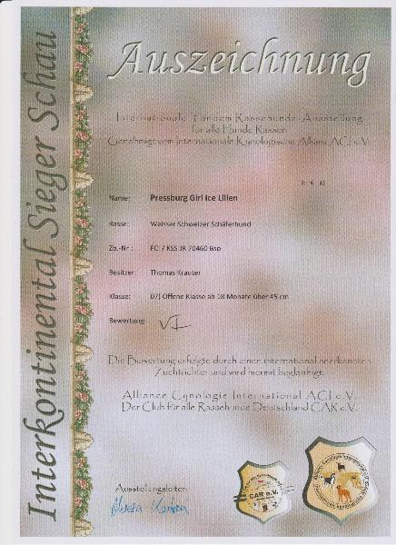 16-07-16-interkontinental-sieger-schau-heilbronn