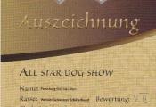 16-05-01-all-star-dog-show-heidelberg