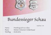 18-06-03-bundessieger-schau-eppelheim