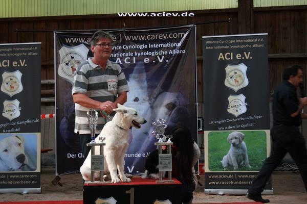 14-09-07-aci-schefflenz_4