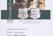 14-09-07-aci-schefflenz_2