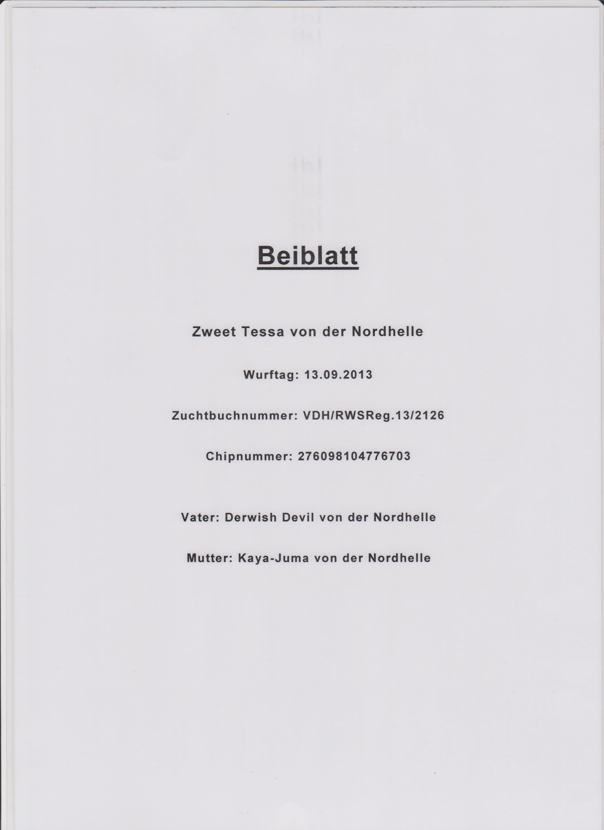Beiblatt 1